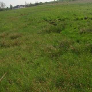 Działka rolna w gminie Wręczyca Wielka